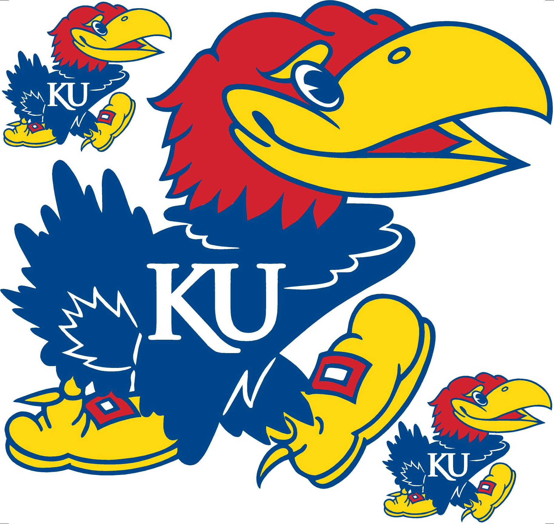 Kansas Team E-Book (2002 - 2012)